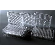 Thumbnail Image for TC-Treated Cell Culture Plates