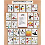 Thumbnail Image for Vinyl Laboratory Safety and Technique Charts
