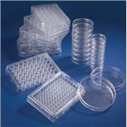 Nunc Dishes with UpCell Surface