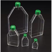 Thumbnail Image for Tissue Culture Flasks