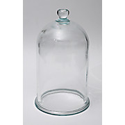 Thumbnail Image for Glass Bell Jars